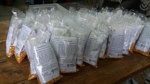 kits de sementes